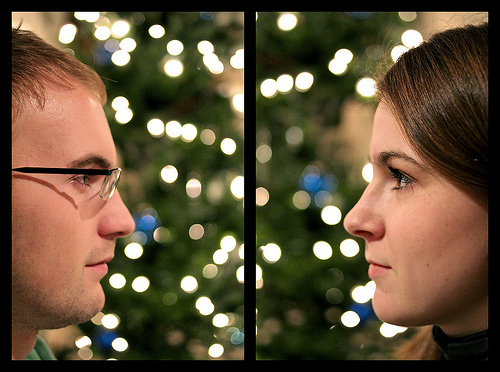 Christmas Bokeh Staring Contest